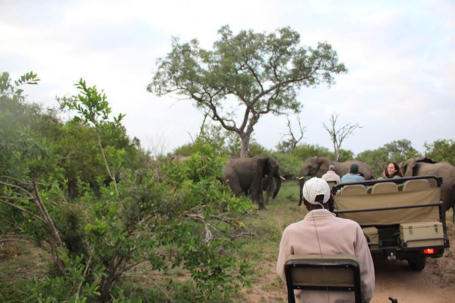 Suedafrika_Afrika 2016 3373